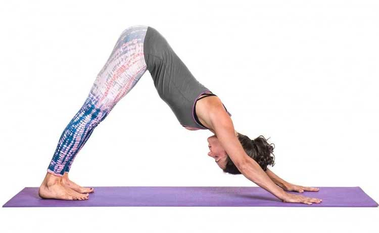 The Benefits Of Flexible With Your Health - Downward-Facing Dog