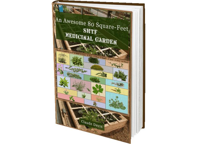 The 72 Square-Feet Medicinal Garden