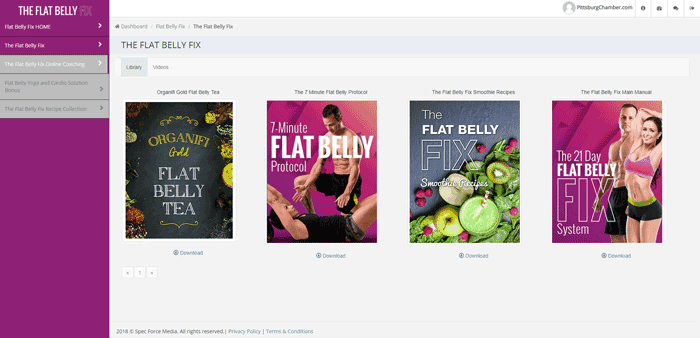The Flat Belly Fix Page For Download In PDF Files Format