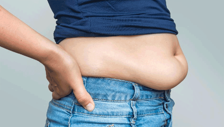 lower stomach fat