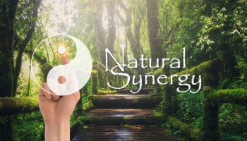 Natural-Synergy-Featured
