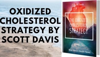 The-Oxidized-Cholesterol-Strategy-Featured