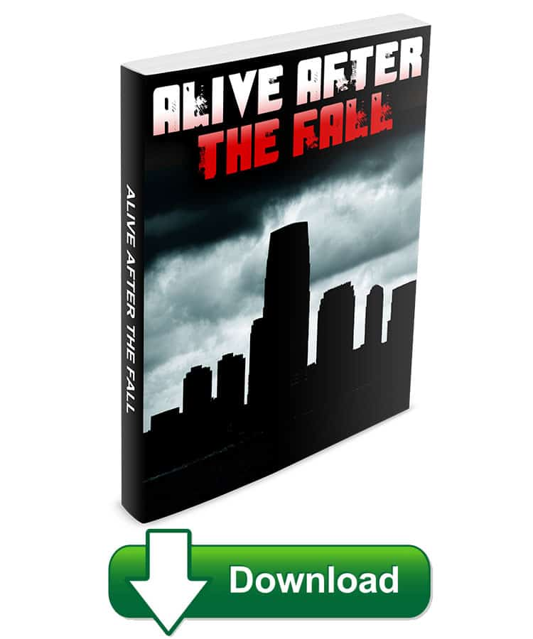 Among the various reviews you have read on Alive After The Fall, this will be the most honest and unobtrusive