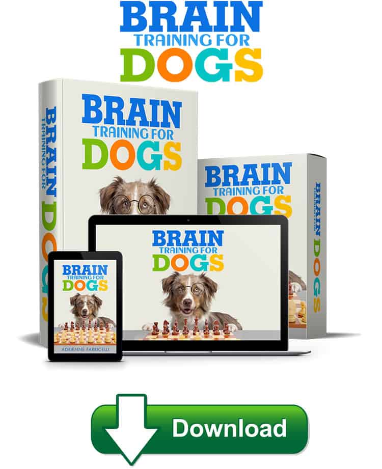Brain Training for Dogs is a Book that focuses on your animal psychologically. Therefore, you can deal with their bad behaviour by releasing.