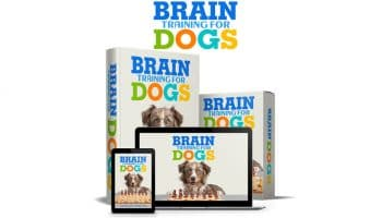 We can tell you that Brain Training for Dogs is an invaluable book that can be used as a training tool and a new way to have fun with my dog