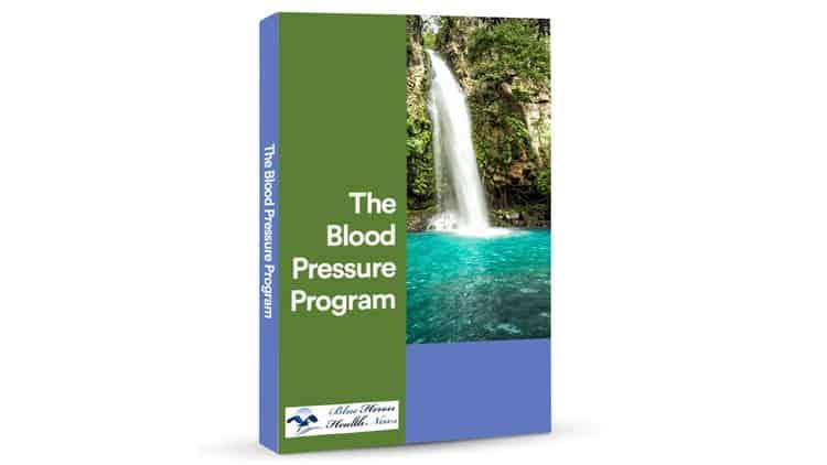 Blood Pressure Program eBook