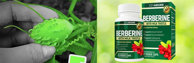 Berberine With Milk Thistle Review