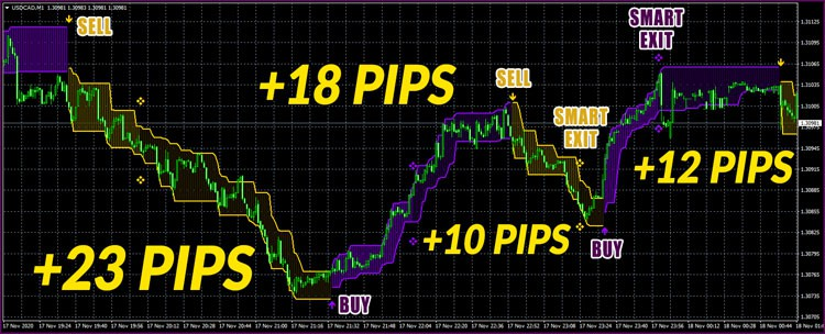 4/4 Wins on USD/CAD, M1: +63 Pips Total. Easy Fast Profit!