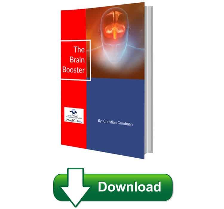 The Brain Booster Program Download