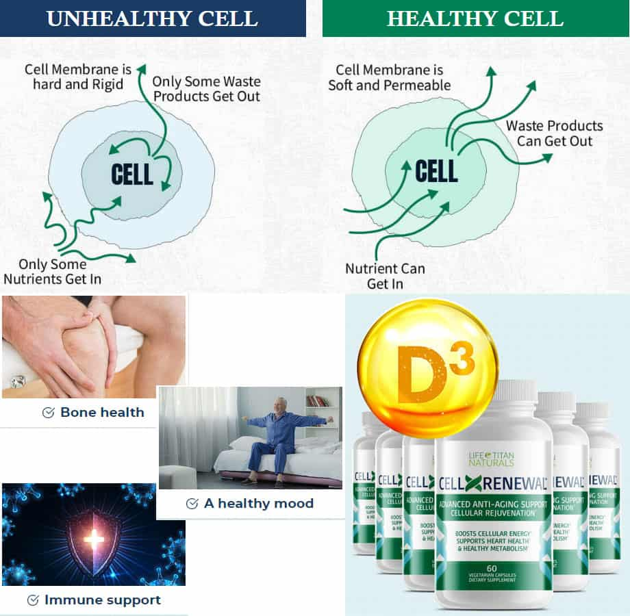 CellXRenewal Review