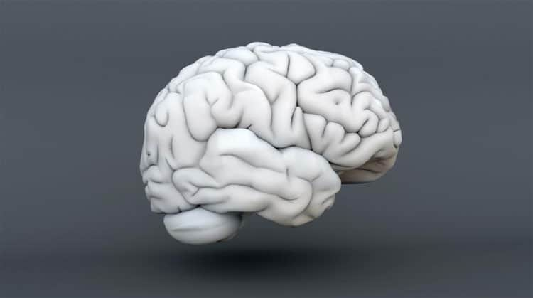 Sleep-Apnea-Could-Cause-Memory-Loss,-New-Study-Suggests