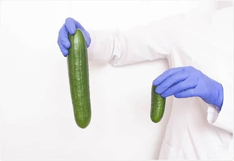Natural-Penis-Enlargement