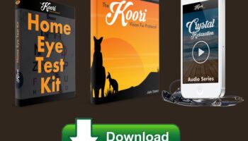 Koori-Vision-Fix-Protocol-Guide-Download