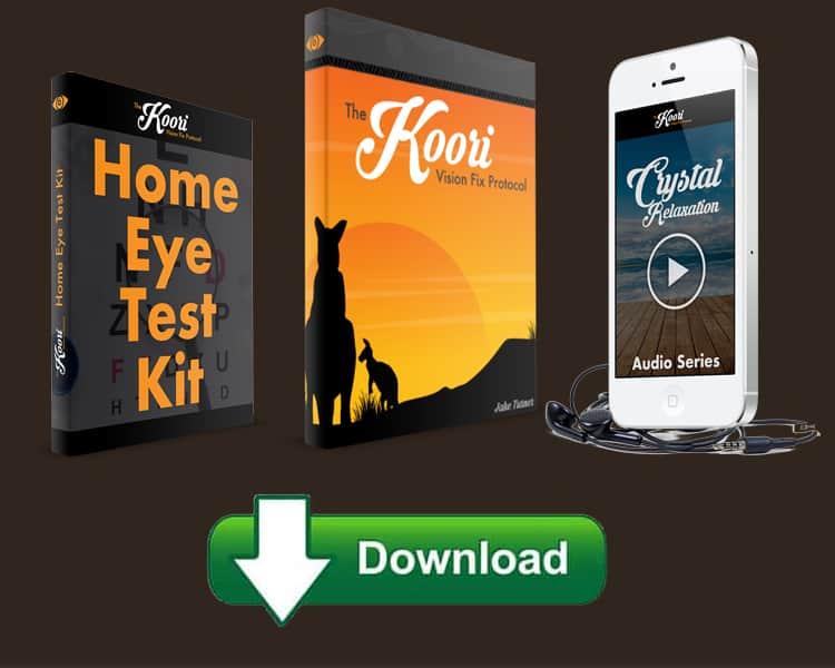 Koori Vision Fix Protocol Guide Download