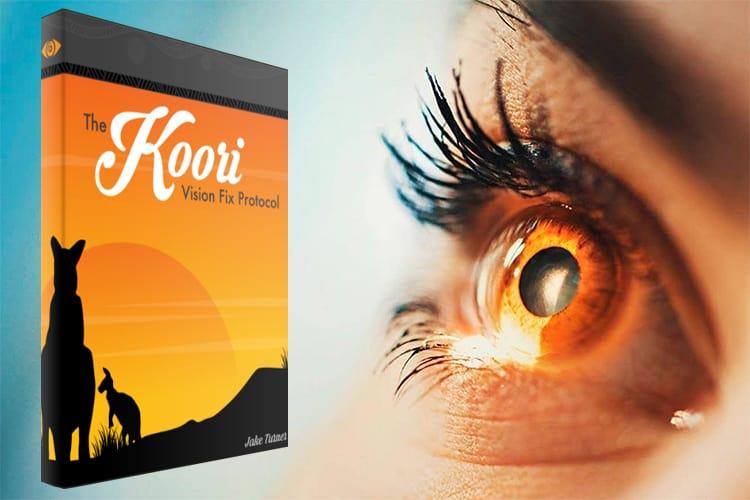 Koori Vision Fix Protocol Review