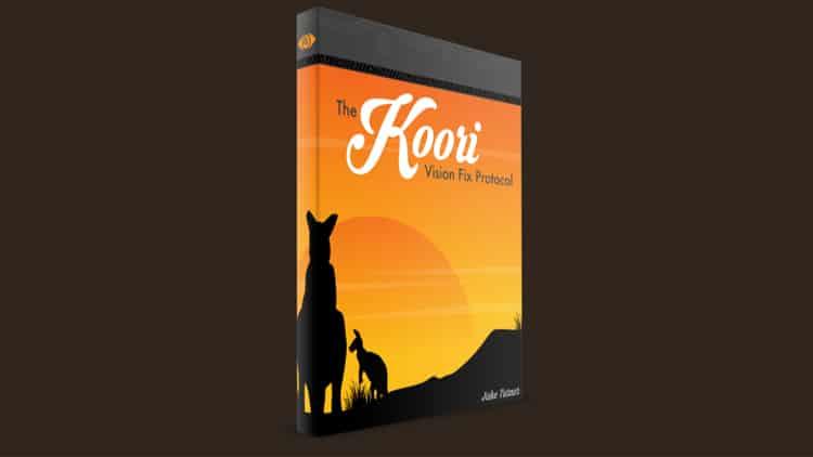 Koori Vision Fix Protocol