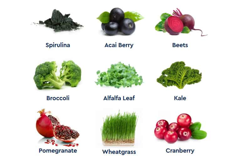 Neutra Greens Ingredients