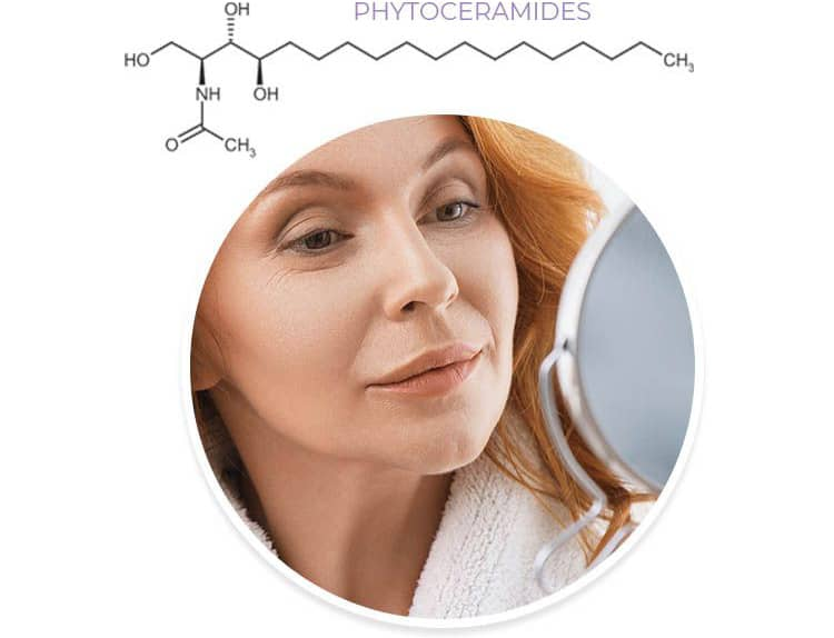 One group was given a daily dose of phytoceramides